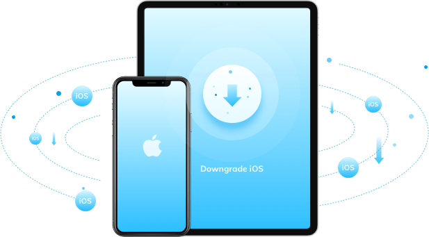 iOS-Systemwiederherstellung -  iOS downgraden